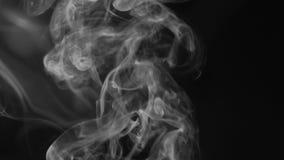Bielu dym na czarnym tle, dymny tło, abstrakta dym na czarnym tle zbiory wideo