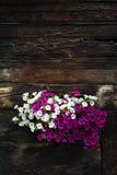 Bielu i fiołka kwiaty zakrywa okno drewniana beli kabina zdjęcie royalty free