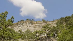 Bielu obłoczny unosić się nad skalista faleza zakrywał zielonych drzewa Widok spod spodu chmury w pogodnym niebieskim niebie nad  zbiory wideo