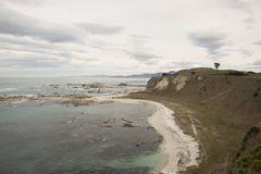 Bielu plażowy i błękitny morze w zimie, Nowa Zelandia Obrazy Stock