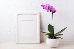 Bielu ramowy mockup z purpurową orchideą w kwiatu garnku Fotografia Royalty Free