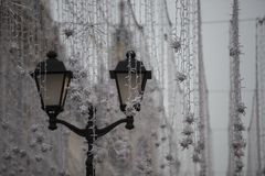 Bielu wciąż burnt gerjanda i lampion Fotografia Royalty Free