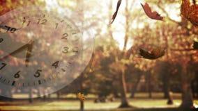 Bielu zegar i spada liście zbiory