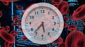 Bielu zegar z czerwonymi komórkami krwi i programów kodami ilustracja wektor