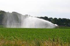 Bien, la Hollande - 07/07/2018 : Arroseuse de l'eau sur la terre agricole photographie stock