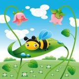 Biene auf dem Blatt Stockfotografie