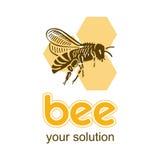 Biene auf einem Bienenwabenhintergrund fliegt Lizenzfreie Stockfotografie