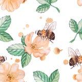 Biene auf einem wilden stieg Lizenzfreie Stockbilder