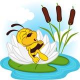 Biene, die in einer Lilie schläft