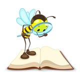 Biene, die mit Vergrößerungsglas sucht Stockfotos