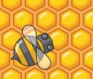 Biene und Bienenwabe Stockbild