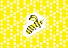Biene und Bienenwaben Stockfotografie