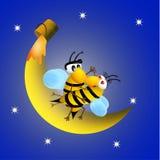 Bienen auf Flitterwochen vektor abbildung
