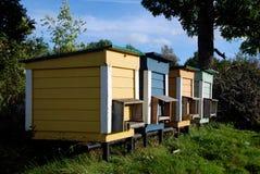 Bienen-Bienenstöcke Stockfotografie