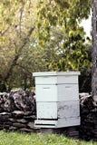 Bienen-Bienenstock Lizenzfreies Stockbild