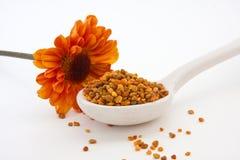 Bienen-Blütenstaub-Körnchen und orange Blume Stockfoto