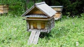 Bienen, die in Bienenstöcke im Bienenhaus fliegen stock footage