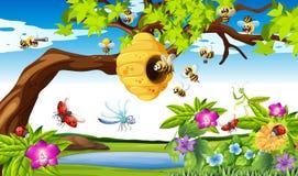 Bienen, die um den Baum im Garten fliegen lizenzfreie abbildung
