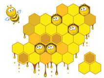 Bienen und Bienenwaben Stockfoto