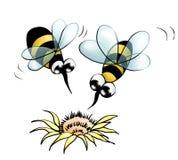 Bienen und Blume (Farbe) Stockbilder