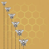 Bienen- und Honighintergrund Stockfotografie