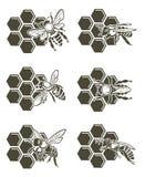 Bienen- und Honigsatz Stockfoto