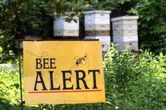 Bienen-Warnung Lizenzfreies Stockfoto