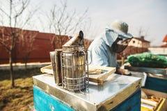 Bienenbienenstockdetail Imker arbeitet mit Bienen und Bienenst?cken auf dem Bienenhaus stockbild