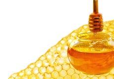 Bienenbienenwabe Lizenzfreie Stockfotos