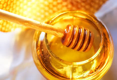 Bienenbienenwabe Lizenzfreie Stockfotografie