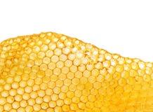 Bienenbienenwaben Stockfoto