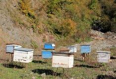 Bienenhäuser Stockbild