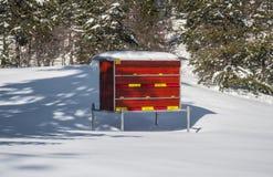 Bienenhaus im Schnee Stockfoto