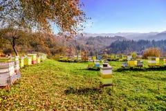 Bienenhaus an Moraca-Kloster in Kolasin, Montenegro stockbilder