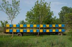 Bienenhausanhänger Stockfotografie