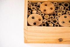Bienenhausbienen nisten den hölzernen ökologischen Bambusklotz Stockfoto