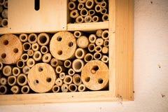Bienenhausbienen nisten den hölzernen ökologischen Bambusklotz Stockbilder