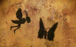 Bienenschmetterlings-Schatten-Steinhintergrund lizenzfreie stockfotografie
