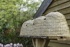 Bienenstöcke in einem Garten Stockfoto