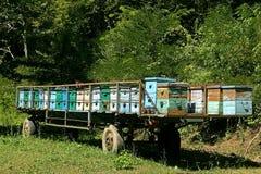 Bienenstöcke im Anhänger Lizenzfreie Stockfotografie