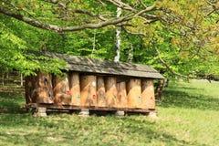 Bienenstöcke im Freiluftmuseum stockfotografie