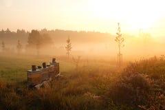 Bienenstöcke im Sonnenschein Stockfotos