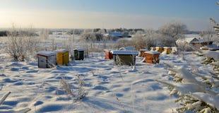 Bienenstöcke im Winter stockbild