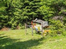 Bienenstöcke in Ulten-Tal nahe Lago-Di Fontana Bianca, Alto Adige, Italien Lizenzfreie Stockbilder