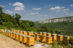 Bienenstöcke Stockfotos