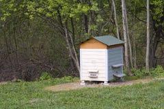 Bienenstock auf einer hölzernen Lichtung Stockbild