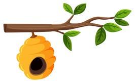 Bienenstock, der von einem Baumast mit Blättern hängt lizenzfreie abbildung