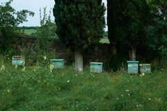 Bienenstock im Garten Stockfotos