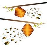 Bienenstock-Zweig lizenzfreie abbildung