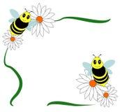 Bienenvektor Lizenzfreie Stockfotos